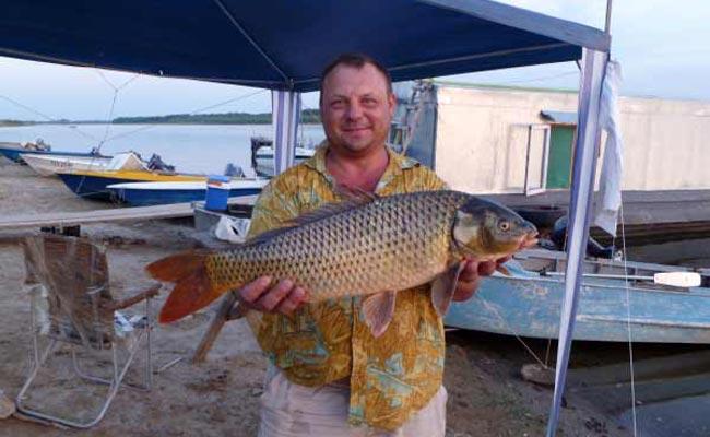 Рыбалка в новой покровке